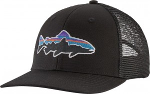 Patagonia Fitz Roy Trout Trucker Hat, BLK