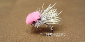 Clown Shoe Caddis